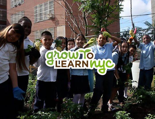 Grow to Learn NYC